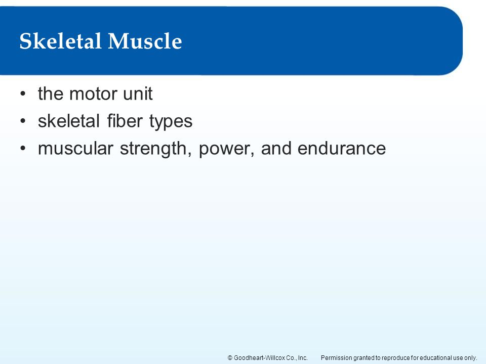 Permission granted to reproduce for educational use only.© Goodheart-Willcox Co., Inc. the motor unit skeletal fiber types muscular strength, power, a