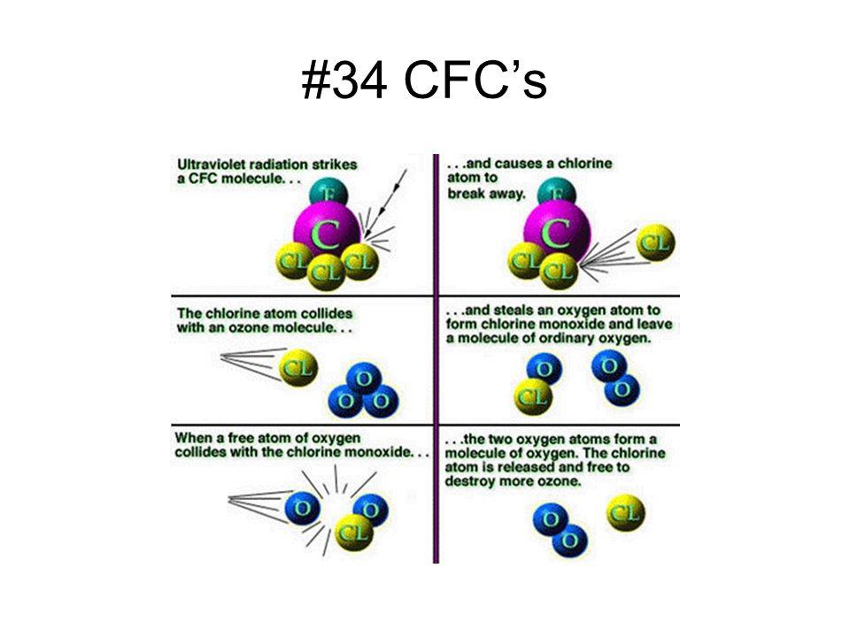 #34 CFCs