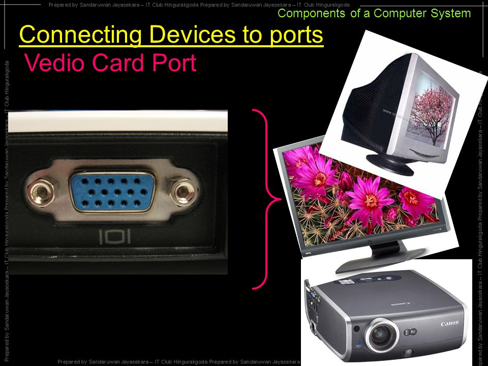 Components of a Computer System Connecting Devices to ports Vedio Card Port