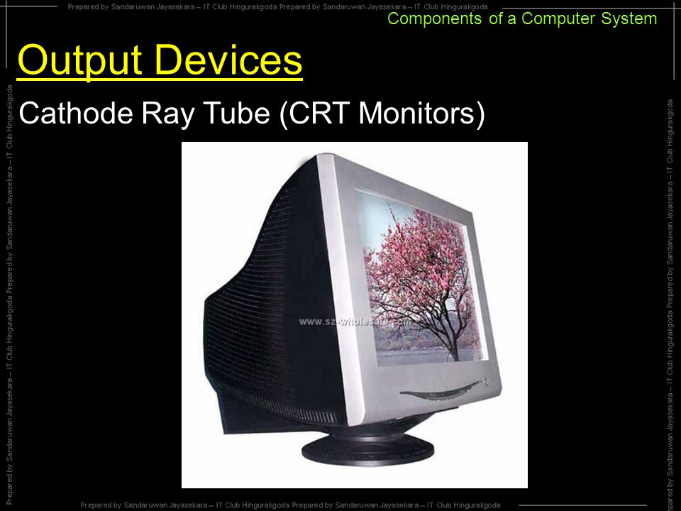 Components of a Computer System Output Devices Cathode Ray Tube (CRT Monitors)