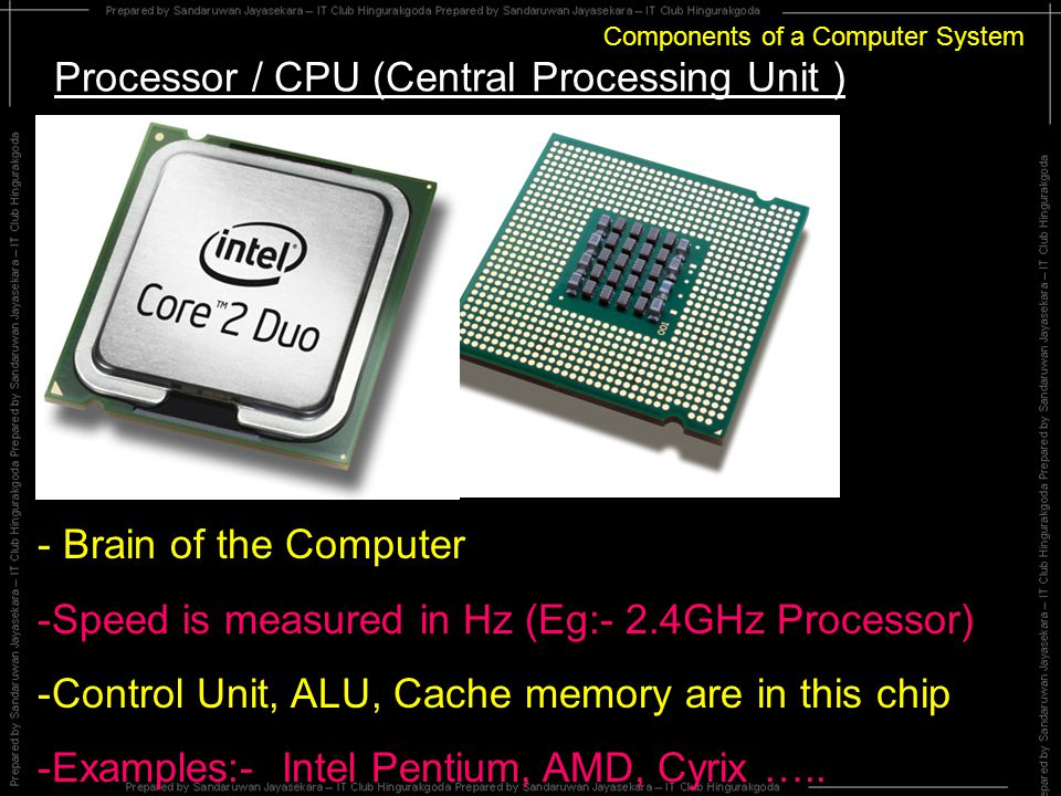 Components of a Computer System Processor / CPU (Central Processing Unit ) - Brain of the Computer -S-Speed is measured in Hz (Eg:- 2.4GHz Processor) -C-Control Unit, ALU, Cache memory are in this chip -E-Examples:- Intel Pentium, AMD, Cyrix …..