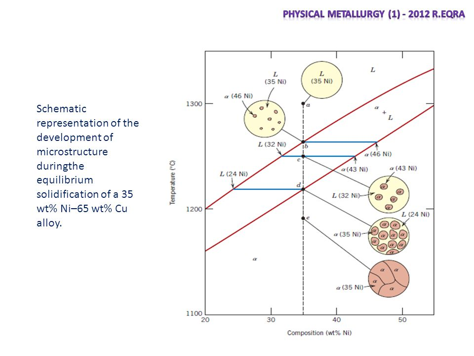 Schematic representation of the development of microstructure duringthe equilibrium solidification of a 35 wt% Ni–65 wt% Cu alloy.