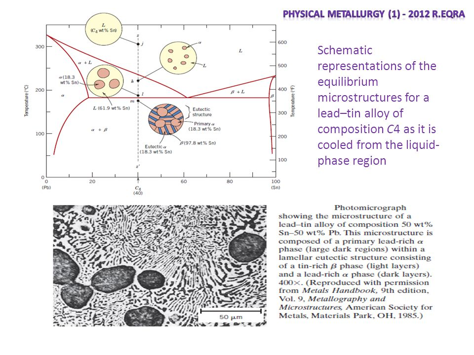 Schematic representations of the equilibrium microstructures for a lead–tin alloy of composition C4 as it is cooled from the liquid- phase region