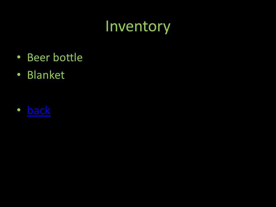 Inventory Beer bottle Blanket back