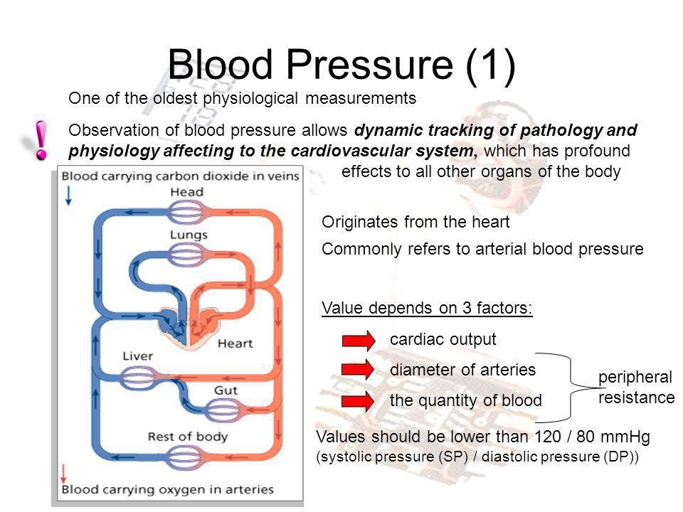 Blood Pressure (2) Pulse pressure (PP) = SP-DP MP = DP+PP/3 Mean pressure (MP) average pressure during one cardiac cycle driving force of the peripheral perfusion.