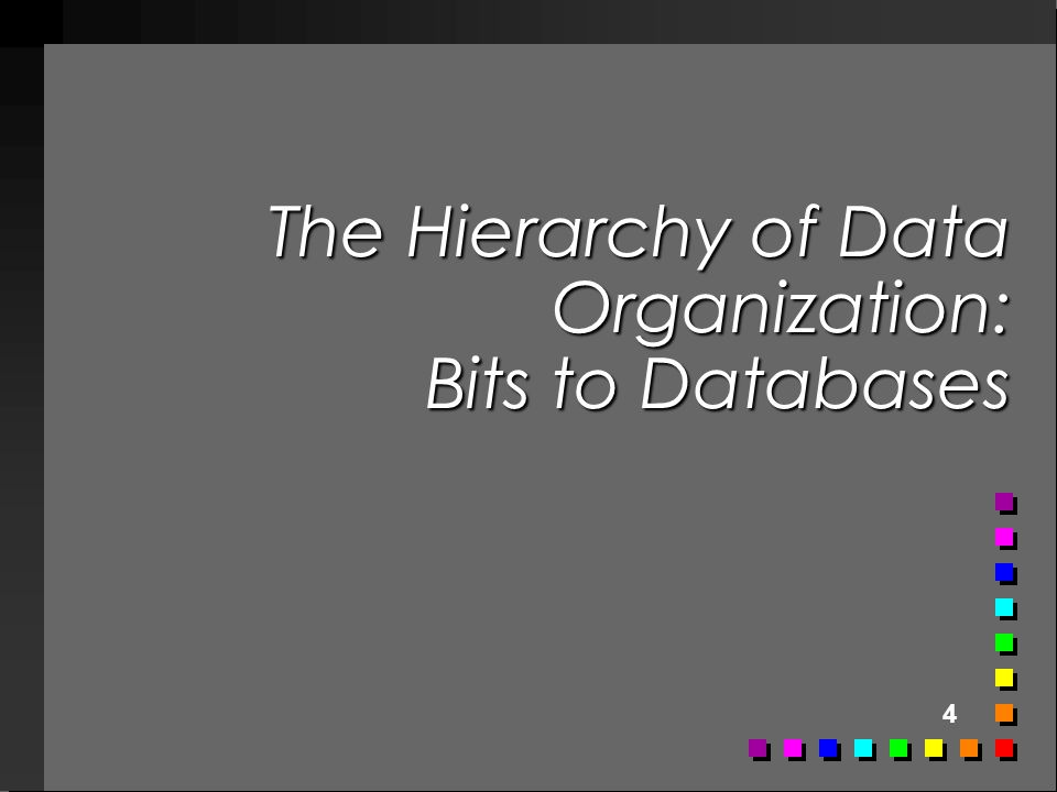 4 The Hierarchy of Data Organization: Bits to Databases