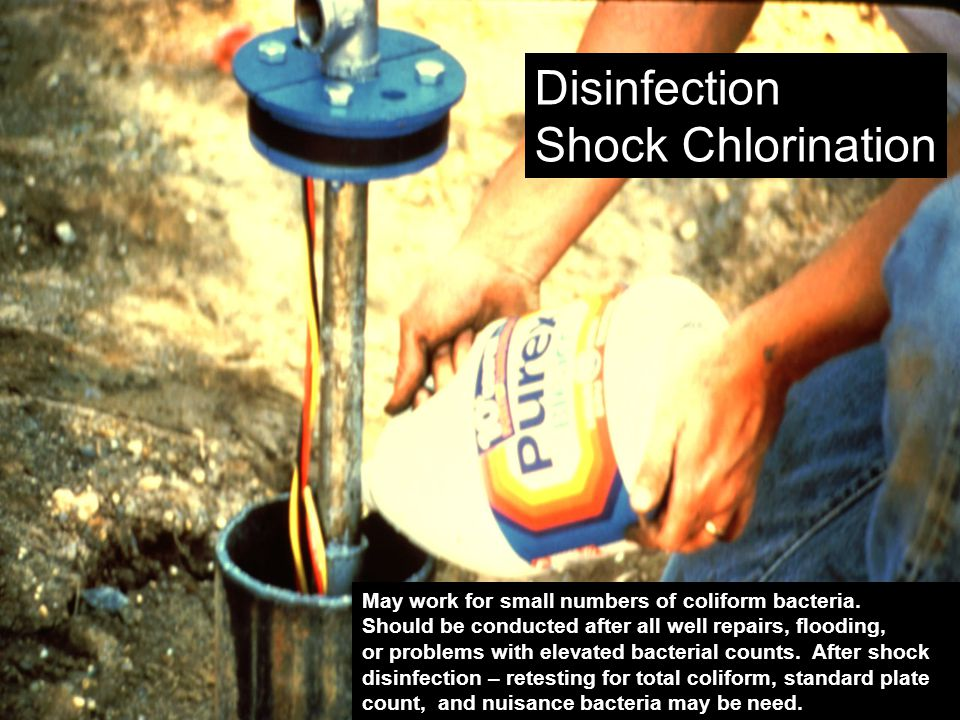 Disinfection Shock Chlorination May work for small numbers of coliform bacteria.