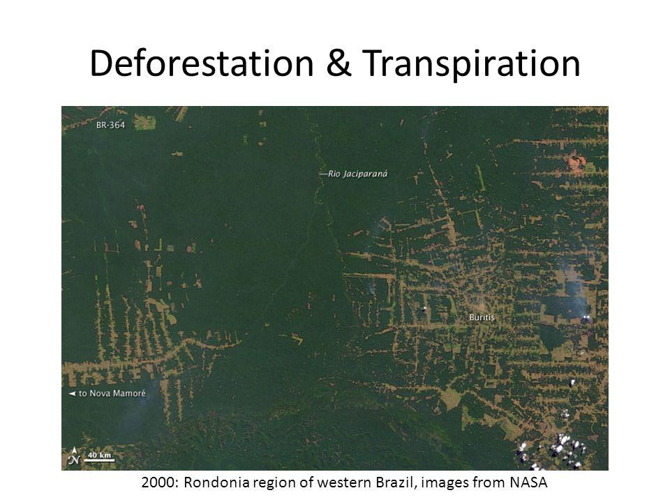 Deforestation & Transpiration 2000: Rondonia region of western Brazil, images from NASA