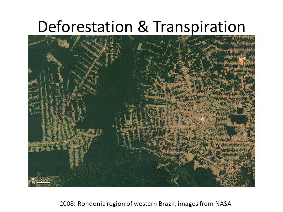 Deforestation & Transpiration 2008: Rondonia region of western Brazil, images from NASA