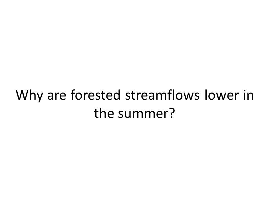 Why are forested streamflows lower in the summer