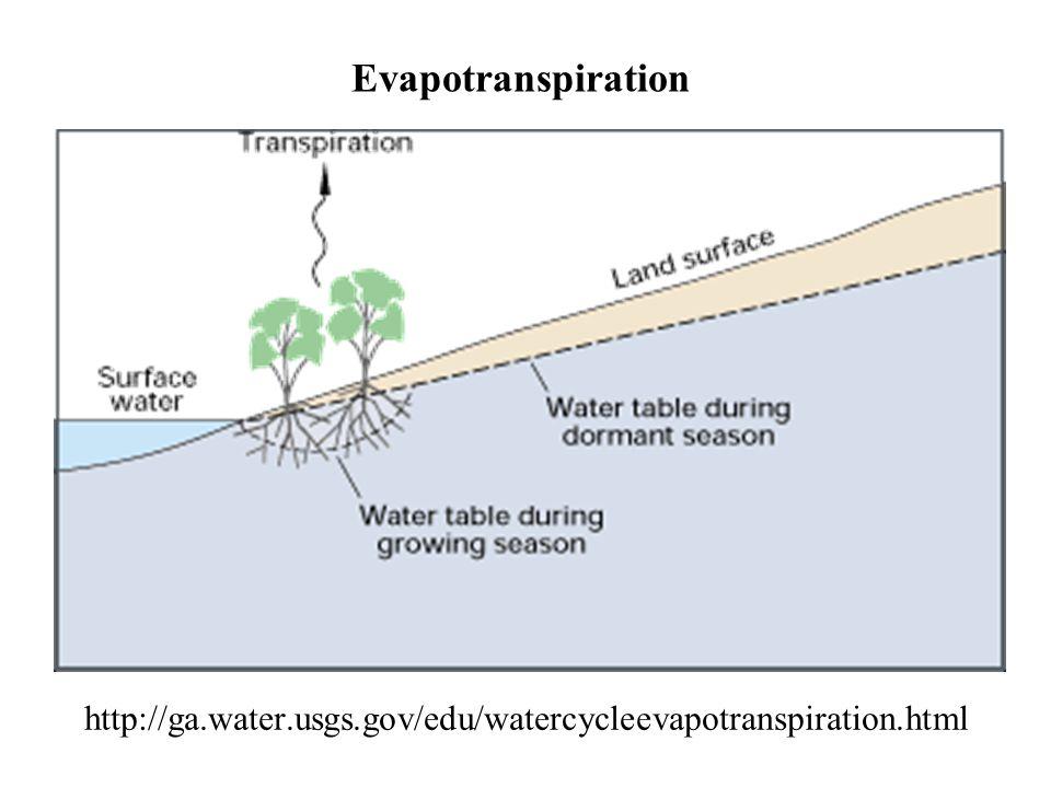 http://ga.water.usgs.gov/edu/watercycleevapotranspiration.html Evapotranspiration
