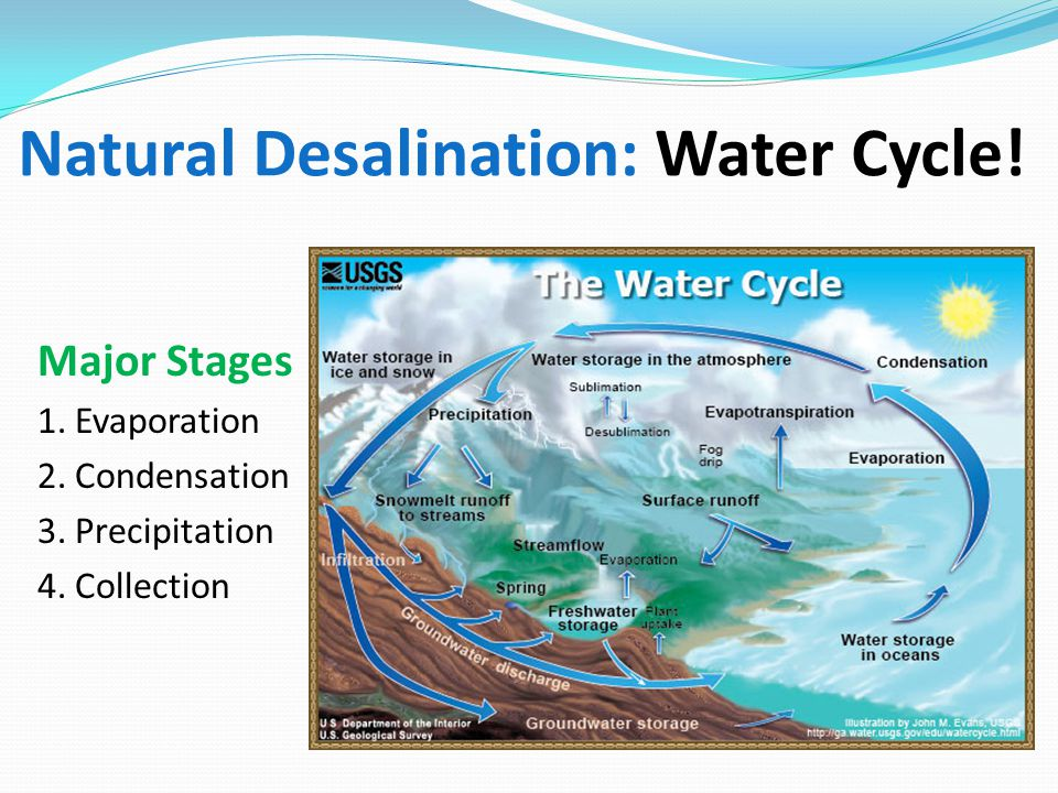 Natural Desalination: Water Cycle! Major Stages 1. Evaporation 2. Condensation 3. Precipitation 4. Collection