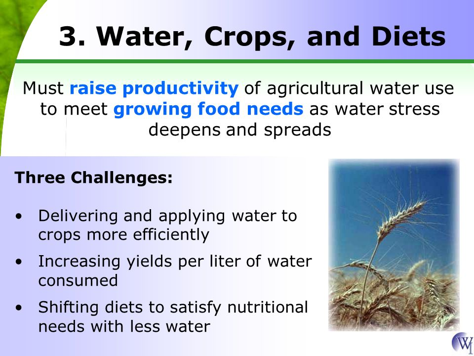 3. Water, Crops, and Diets Must raise productivity of agricultural water use to meet growing food needs as water stress deepens and spreads Three Chal