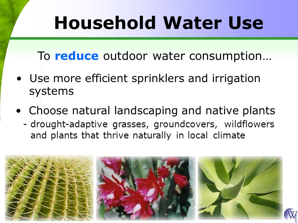 Household Water Use To reduce outdoor water consumption… Use more efficient sprinklers and irrigation systems Choose natural landscaping and native pl