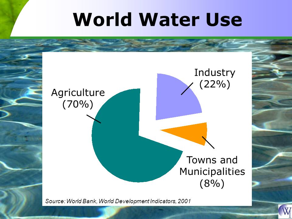 World Water Use Agriculture (70%) Industry (22%) Towns and Municipalities (8%) Source: World Bank, World Development Indicators, 2001