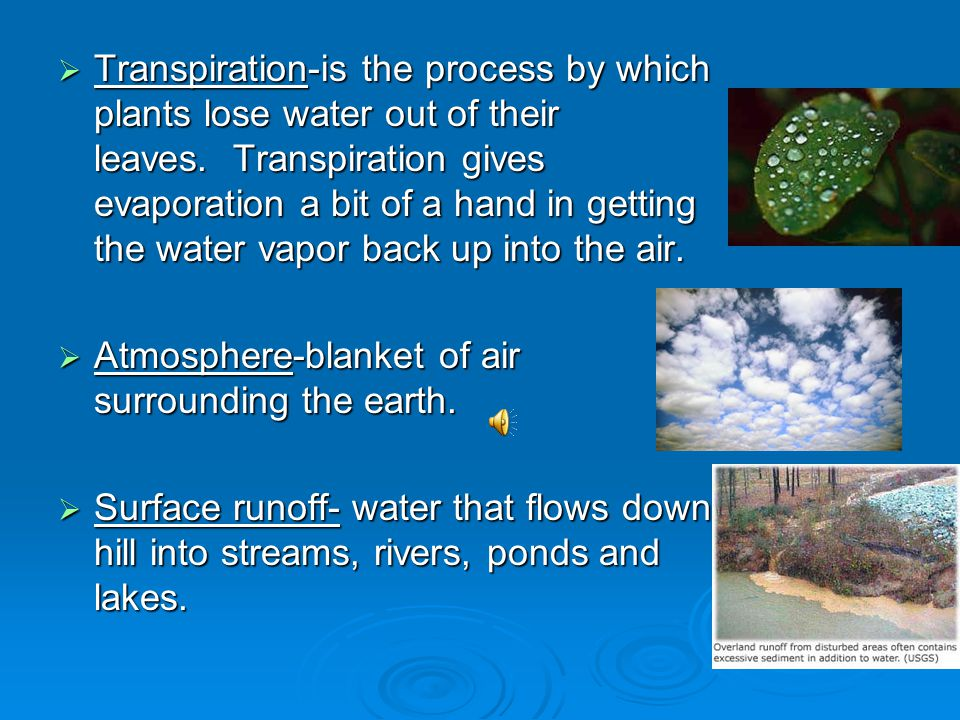Vocabulary Condensation-Water vapor in the air gets cold and changes back into liquid, forming clouds. Condensation-Water vapor in the air gets cold a