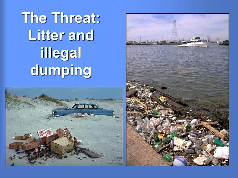 The Threat: Litter and illegal dumping