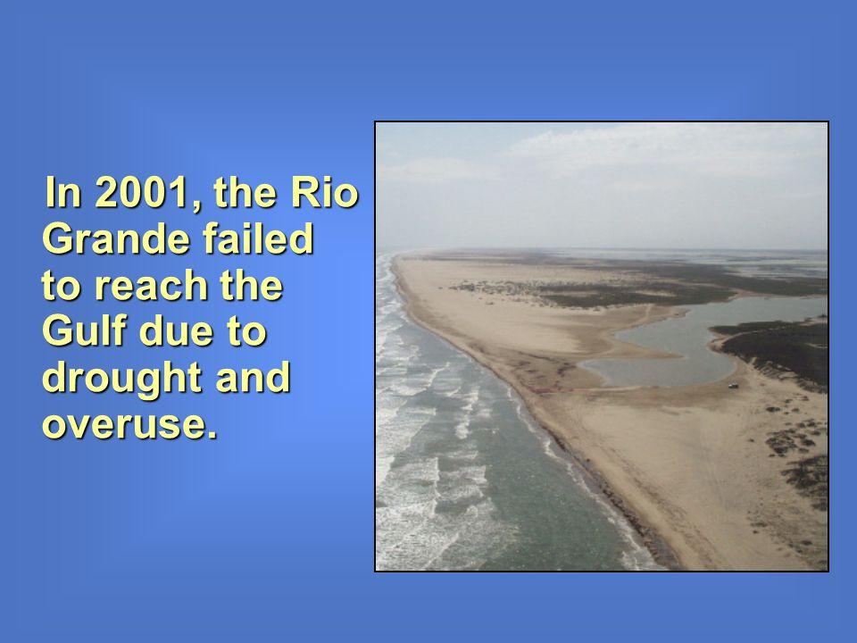 In 2001, the Rio Grande failed to reach the Gulf due to drought and overuse. In 2001, the Rio Grande failed to reach the Gulf due to drought and overu