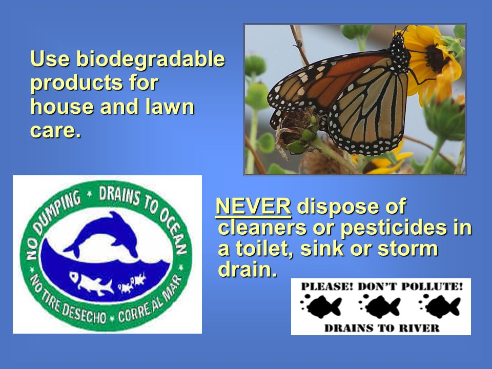 NEVER dispose of cleaners or pesticides in a toilet, sink or storm drain. NEVER dispose of cleaners or pesticides in a toilet, sink or storm drain. Us