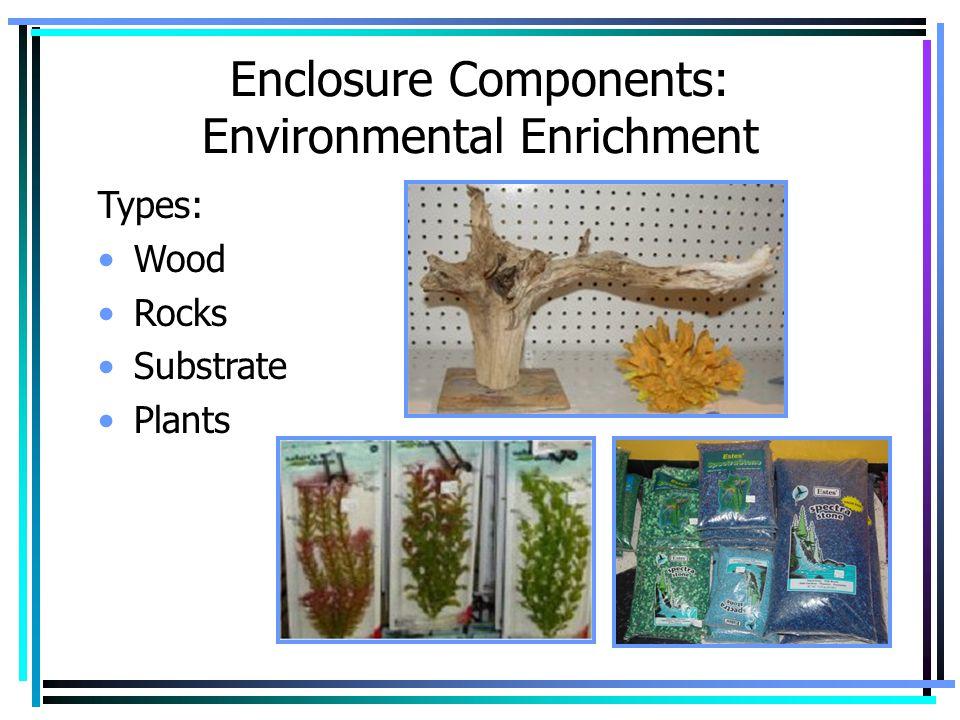 Enclosure Components: Environmental Enrichment Types: Wood Rocks Substrate Plants