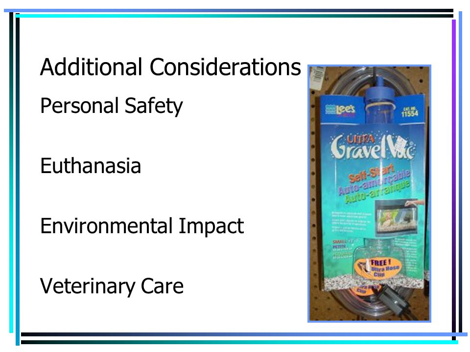 Additional Considerations Personal Safety Euthanasia Environmental Impact Veterinary Care