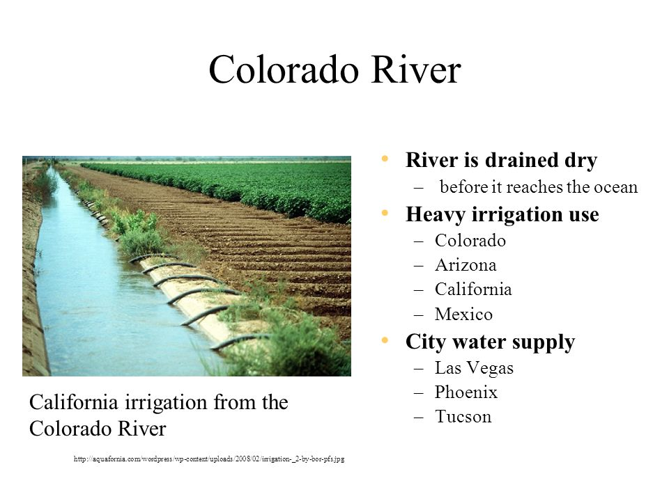 Colorado River River is drained dry – before it reaches the ocean Heavy irrigation use –Colorado –Arizona –California –Mexico City water supply –Las Vegas –Phoenix –Tucson http://aquafornia.com/wordpress/wp-content/uploads/2008/02/irrigation-_2-by-bor-pfs.jpg California irrigation from the Colorado River