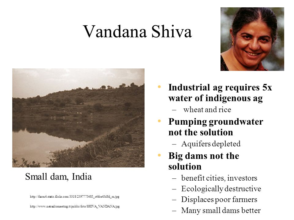 Vandana Shiva Industrial ag requires 5x water of indigenous ag – wheat and rice Pumping groundwater not the solution –Aquifers depleted Big dams not the solution –benefit cities, investors –Ecologically destructive –Displaces poor farmers –Many small dams better Small dam, India http://www.netradiomeeting.it/public/foto/SHIVA_VANDANA.jpg http://farm4.static.flickr.com/3018/2397775485_c4fce43d8d_m.jpg