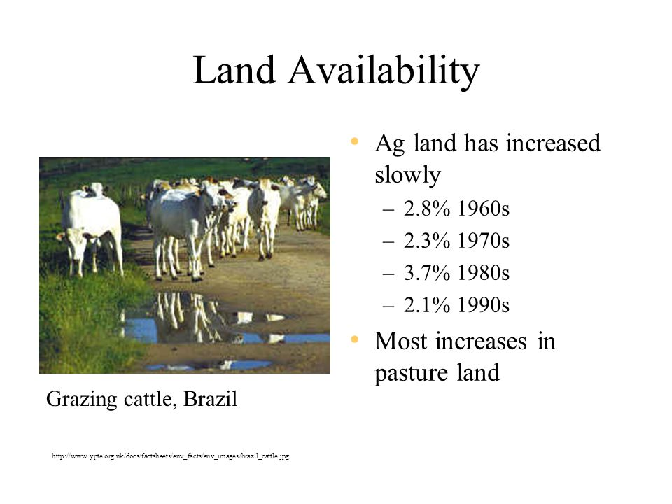 Land Availability Ag land has increased slowly –2.8% 1960s –2.3% 1970s –3.7% 1980s –2.1% 1990s Most increases in pasture land Grazing cattle, Brazil http://www.ypte.org.uk/docs/factsheets/env_facts/env_images/brazil_cattle.jpg