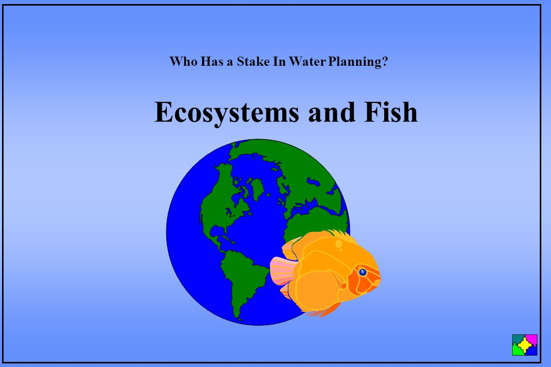 Ecosystems and Fish Who Has a Stake In Water Planning