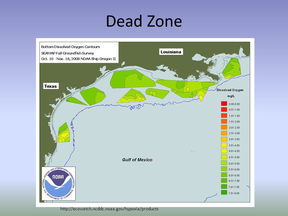 Dead Zone http://ecowatch.ncddc.noaa.gov/hypoxia/products