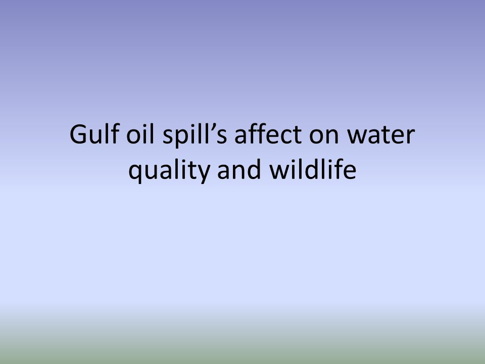 Gulf oil spills affect on water quality and wildlife