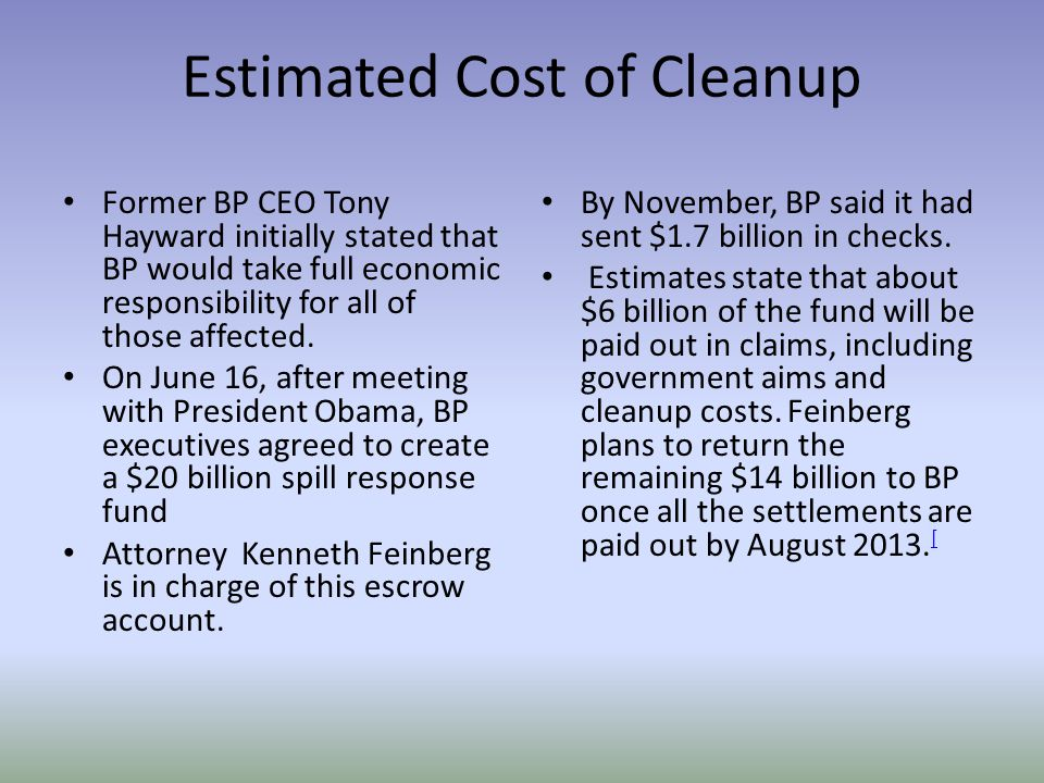 Estimated Cost of Cleanup Former BP CEO Tony Hayward initially stated that BP would take full economic responsibility for all of those affected.
