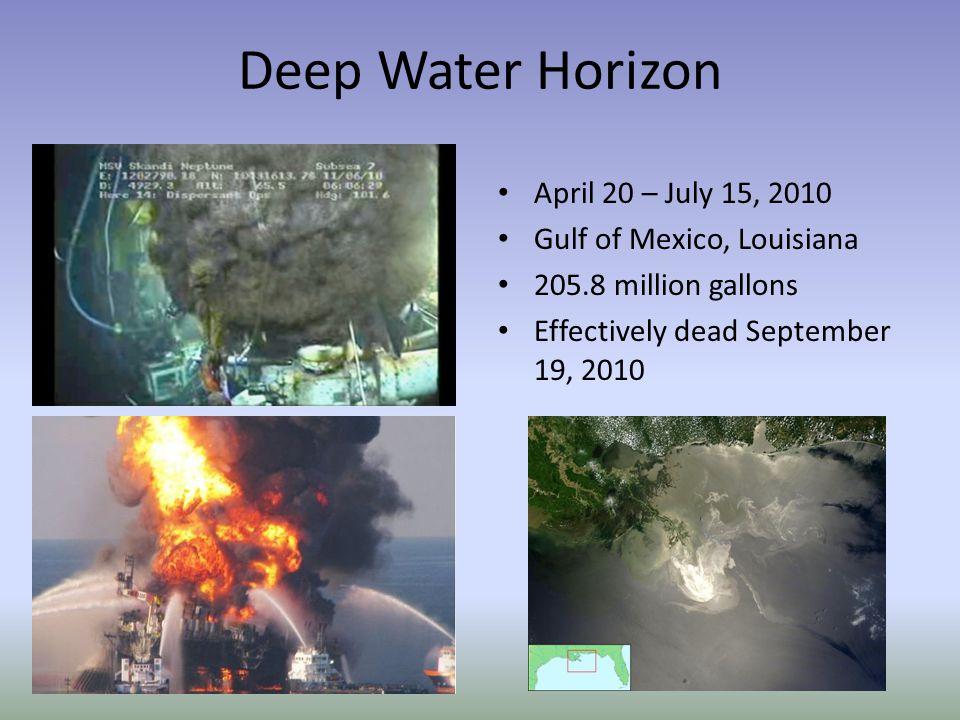 The Deep Water Horizon Oil Spill