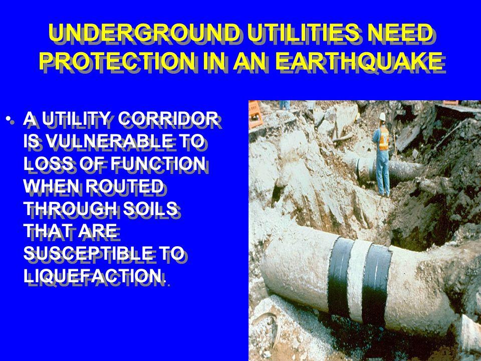JAPAN: NUCLEAR POWER PLANTS NEED PROTECION IN AN EARTHQUAKE