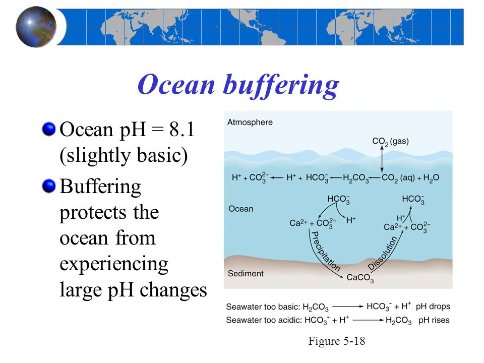 Ocean buffering Ocean pH = 8.1 (slightly basic) Buffering protects the ocean from experiencing large pH changes Figure 5-18