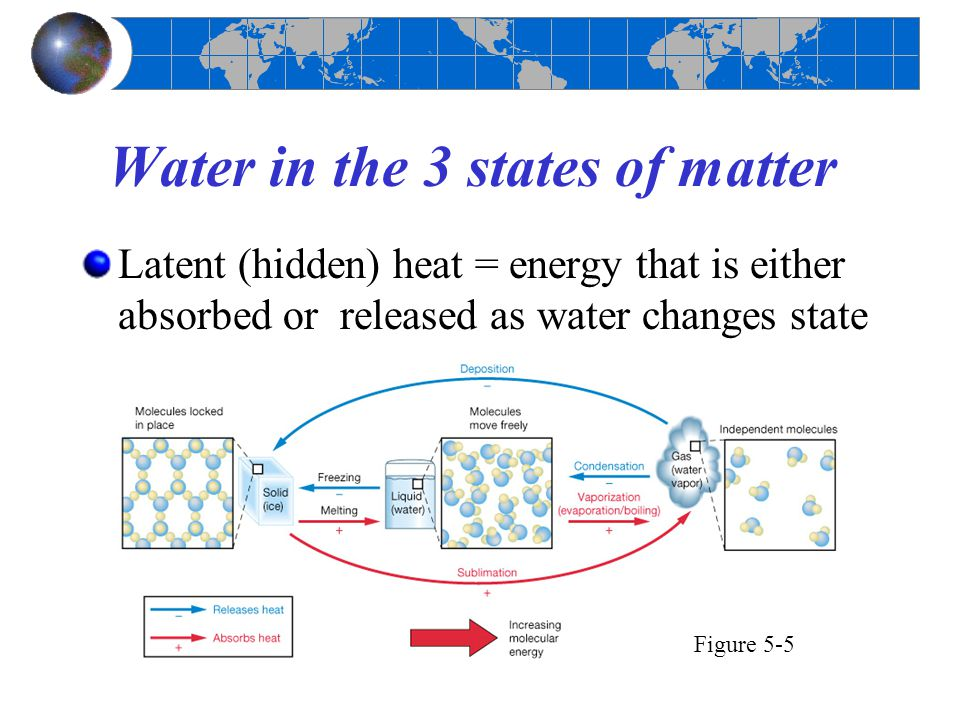 Water in the 3 states of matter Latent (hidden) heat = energy that is either absorbed or released as water changes state Figure 5-5