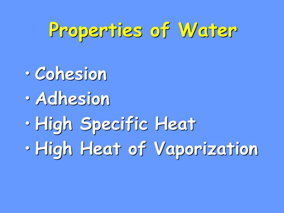 Properties of Water CohesionCohesion AdhesionAdhesion High Specific HeatHigh Specific Heat High Heat of VaporizationHigh Heat of Vaporization