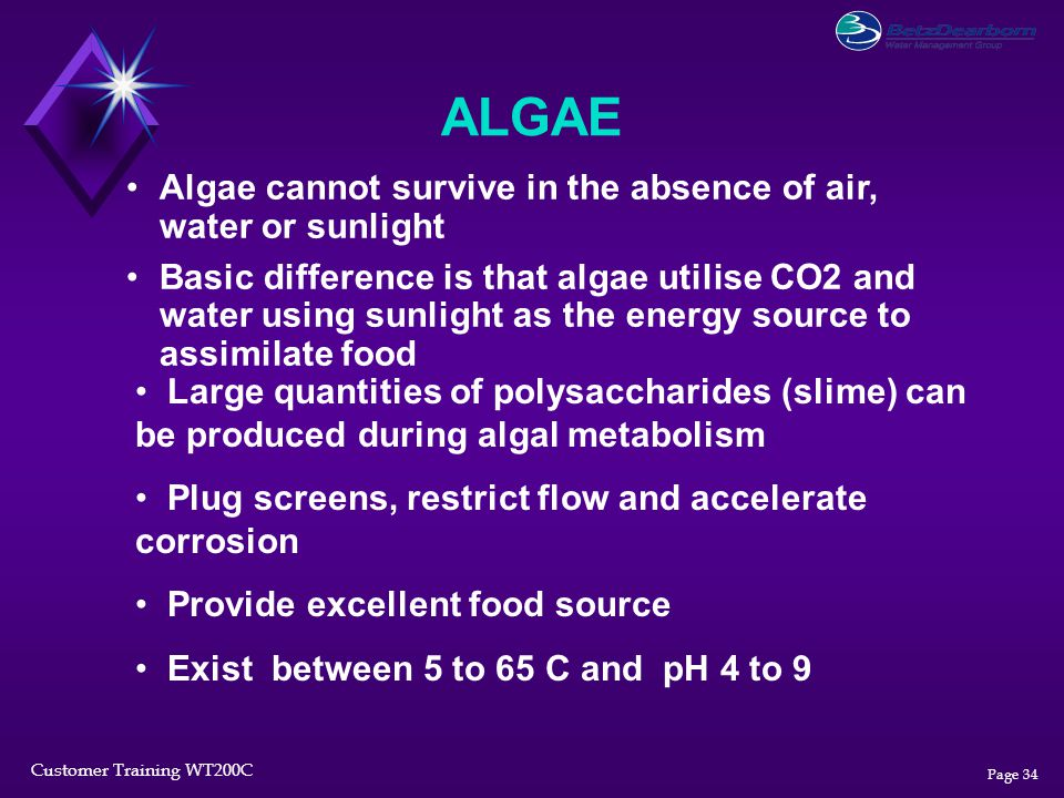 Customer Training WT200C Page 34 ALGAE Algae cannot survive in the absence of air, water or sunlight Basic difference is that algae utilise CO2 and wa