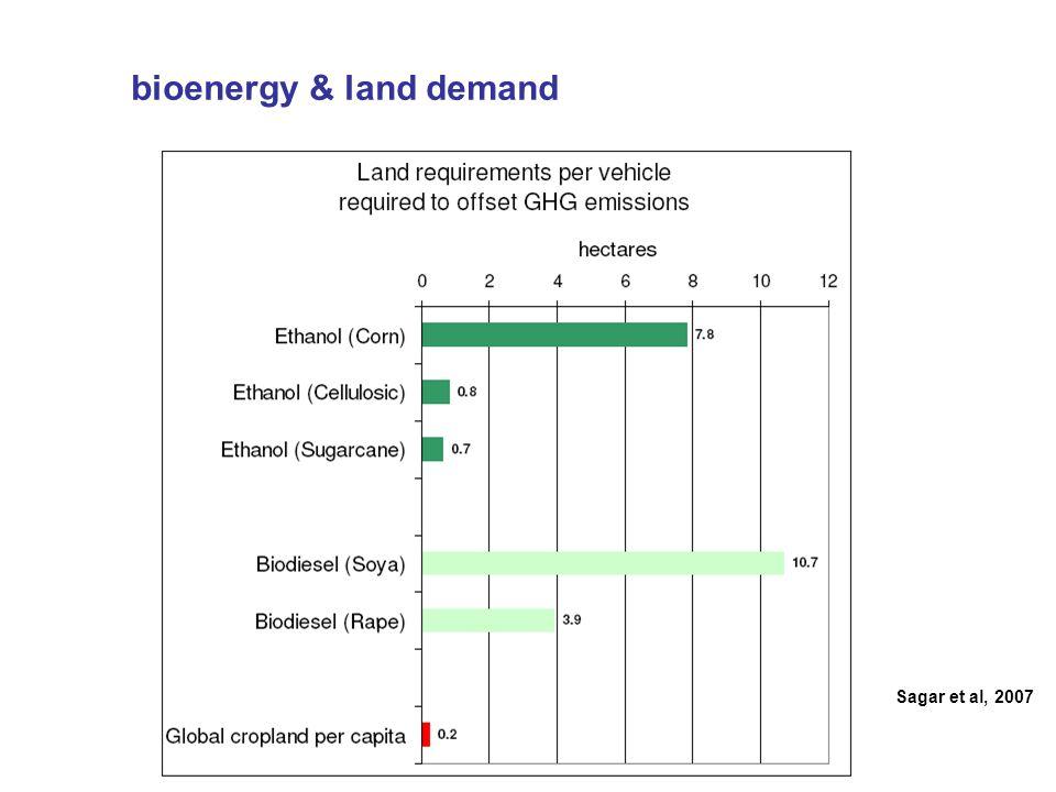 Sagar et al, 2007 bioenergy & land demand