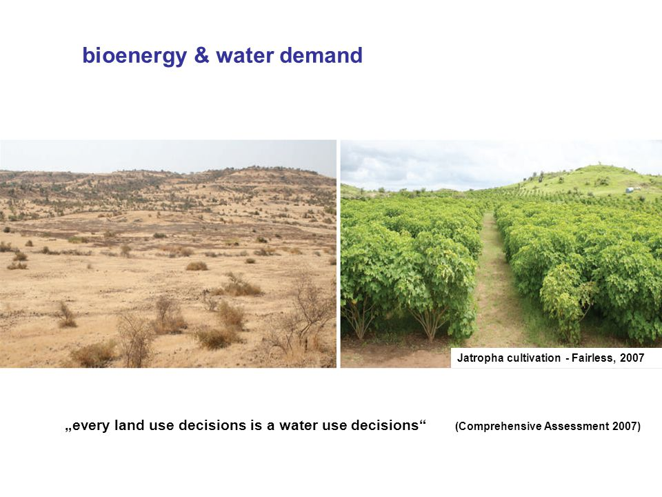 Jatropha cultivation - Fairless, 2007 every land use decisions is a water use decisions (Comprehensive Assessment 2007) bioenergy & water demand