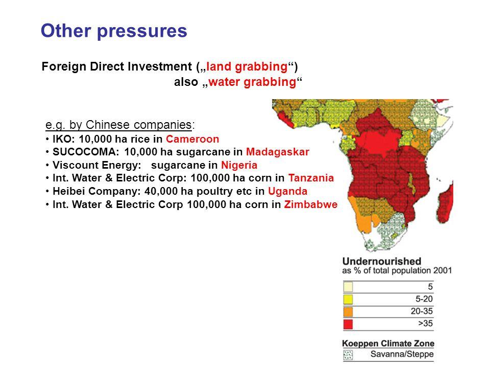 Foreign Direct Investment (land grabbing) GTZ 2009 e.g.