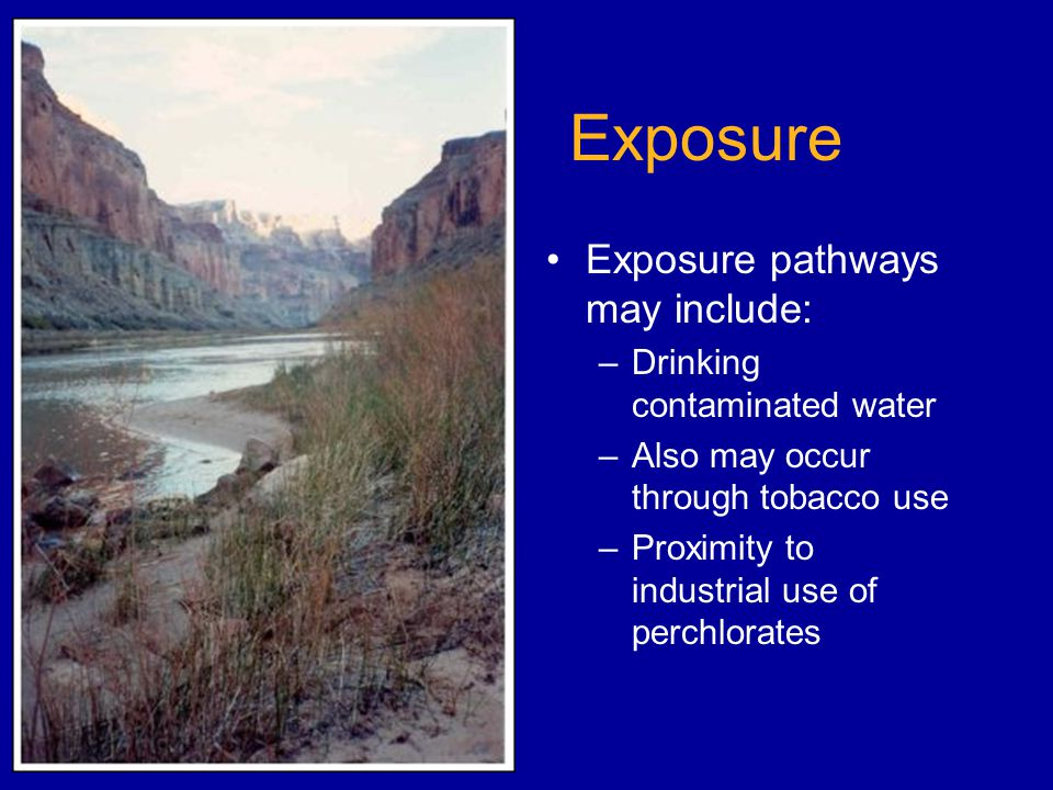 Exposure Exposure pathways may include: –Drinking contaminated water –Also may occur through tobacco use –Proximity to industrial use of perchlorates