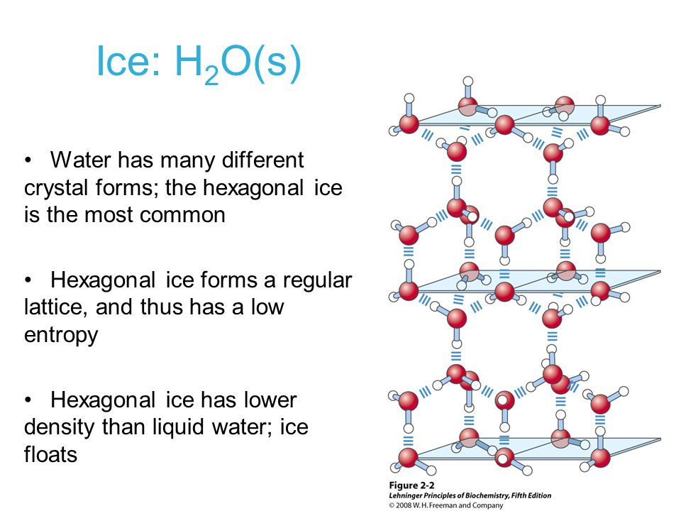 Ice: H 2 O(s) Water has many different crystal forms; the hexagonal ice is the most common Hexagonal ice forms a regular lattice, and thus has a low e