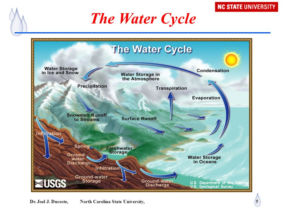 Dr. Joel J. Ducoste, North Carolina State University, 5 The Water Cycle