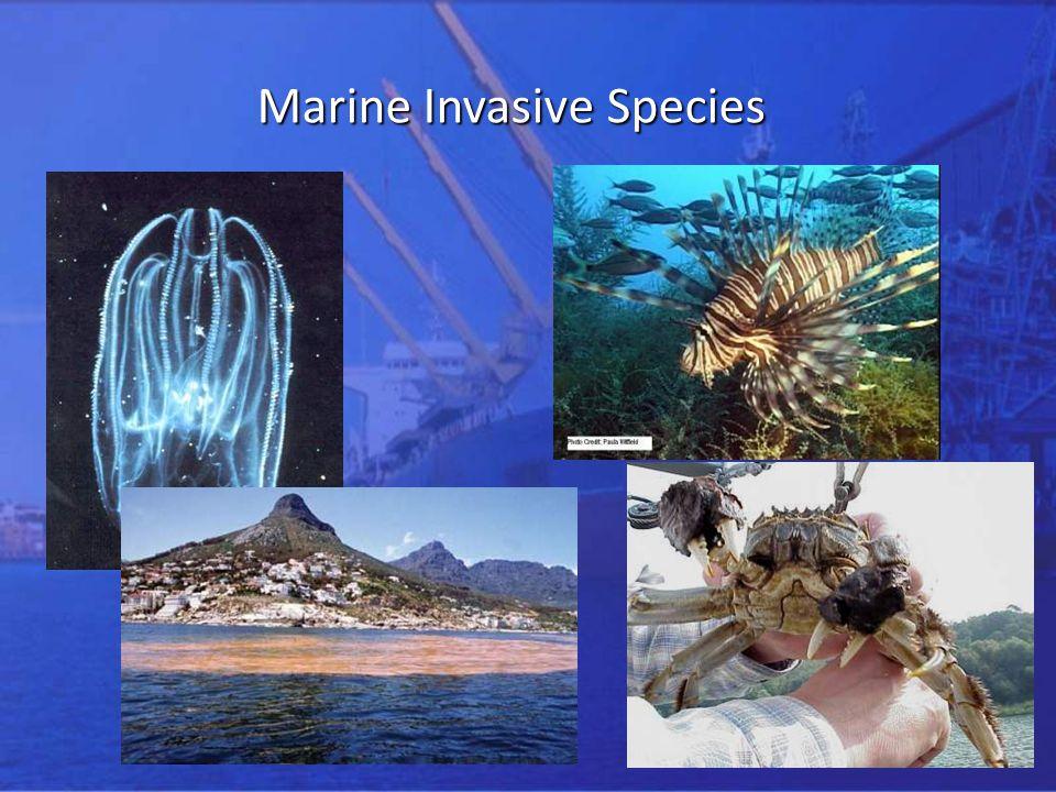 2 Marine Invasive Species