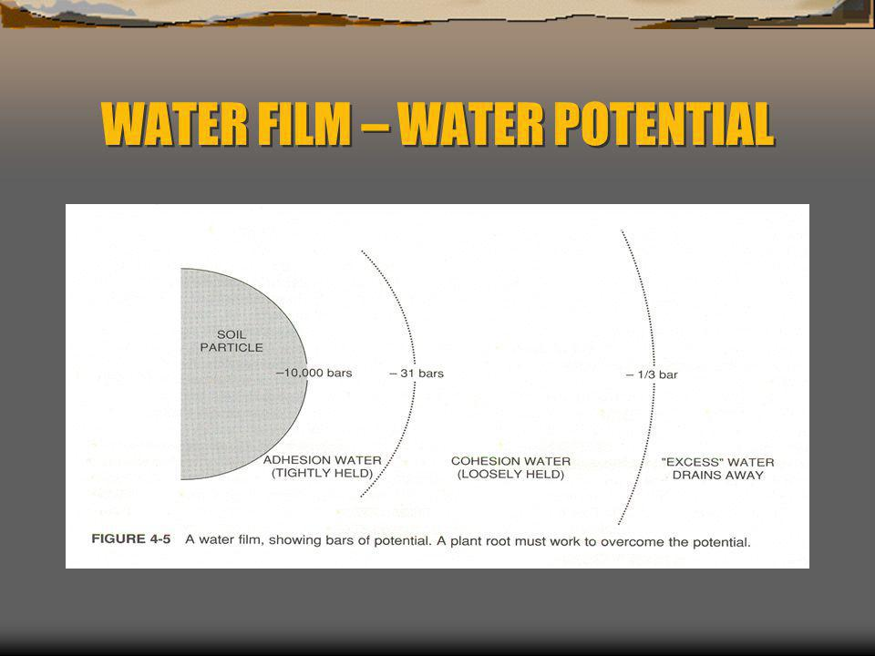 WATER FILM – WATER POTENTIAL