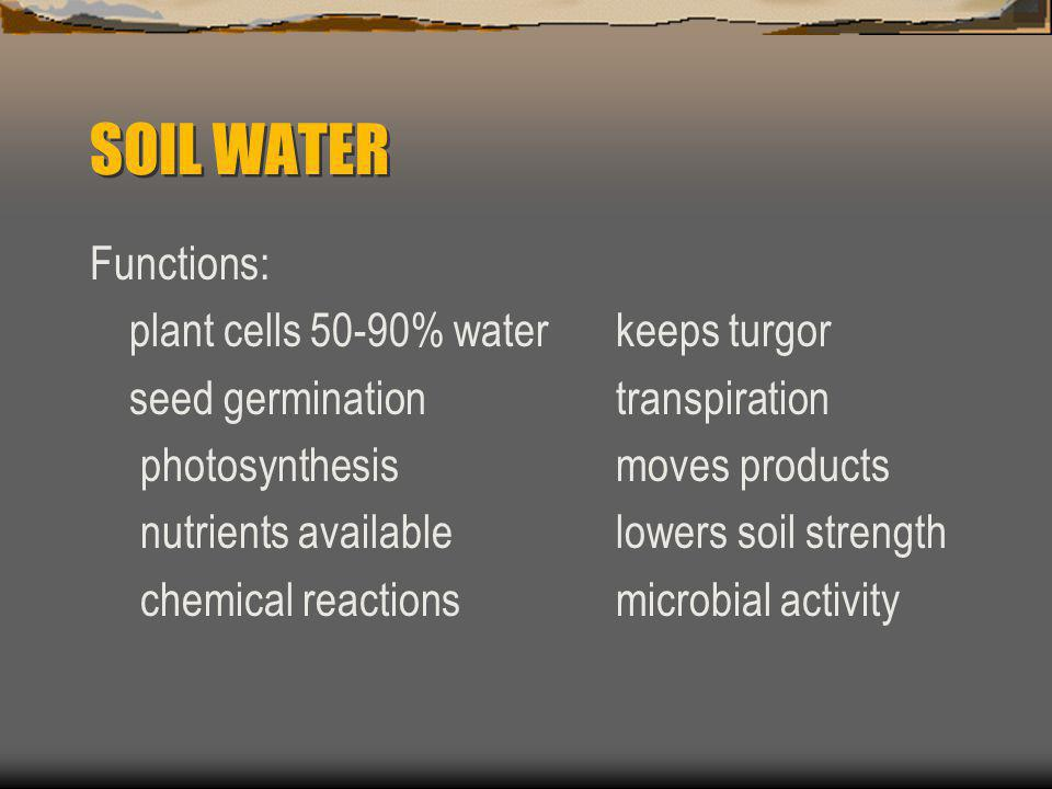 SOIL WATER Functions: plant cells 50-90% waterkeeps turgor seed germinationtranspiration photosynthesis moves products nutrients available lowers soil strength chemical reactions microbial activity