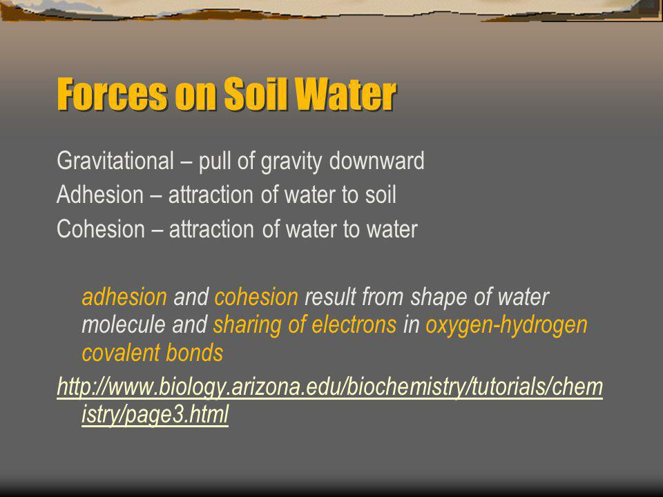 Forces on Soil Water Gravitational – pull of gravity downward Adhesion – attraction of water to soil Cohesion – attraction of water to water adhesion and cohesion result from shape of water molecule and sharing of electrons in oxygen-hydrogen covalent bonds http://www.biology.arizona.edu/biochemistry/tutorials/chem istry/page3.html