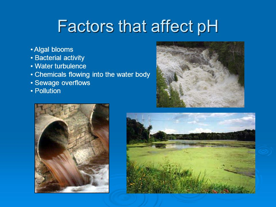 Factors that affect pH Algal blooms Bacterial activity Water turbulence Chemicals flowing into the water body Sewage overflows Pollution