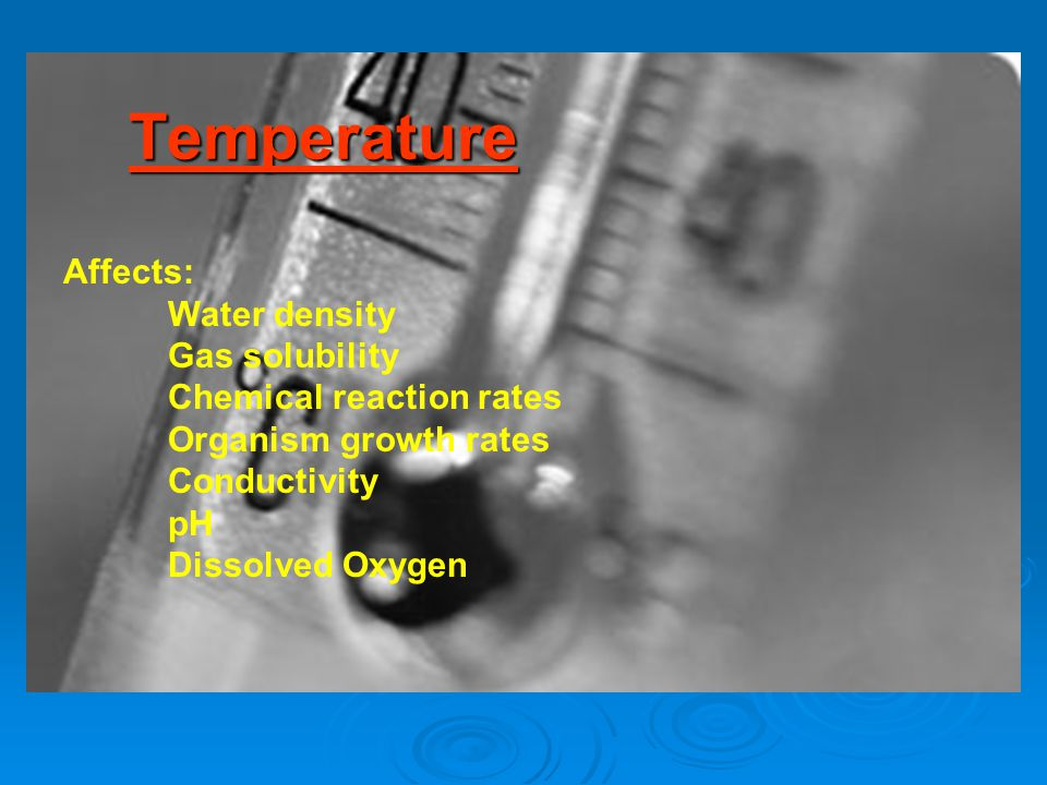 Temperature Affects: Water density Gas solubility Chemical reaction rates Organism growth rates Conductivity pH Dissolved Oxygen
